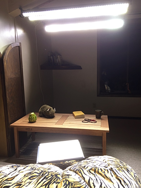 Workstation for seasonal affective disorder with multiple bright LED bars